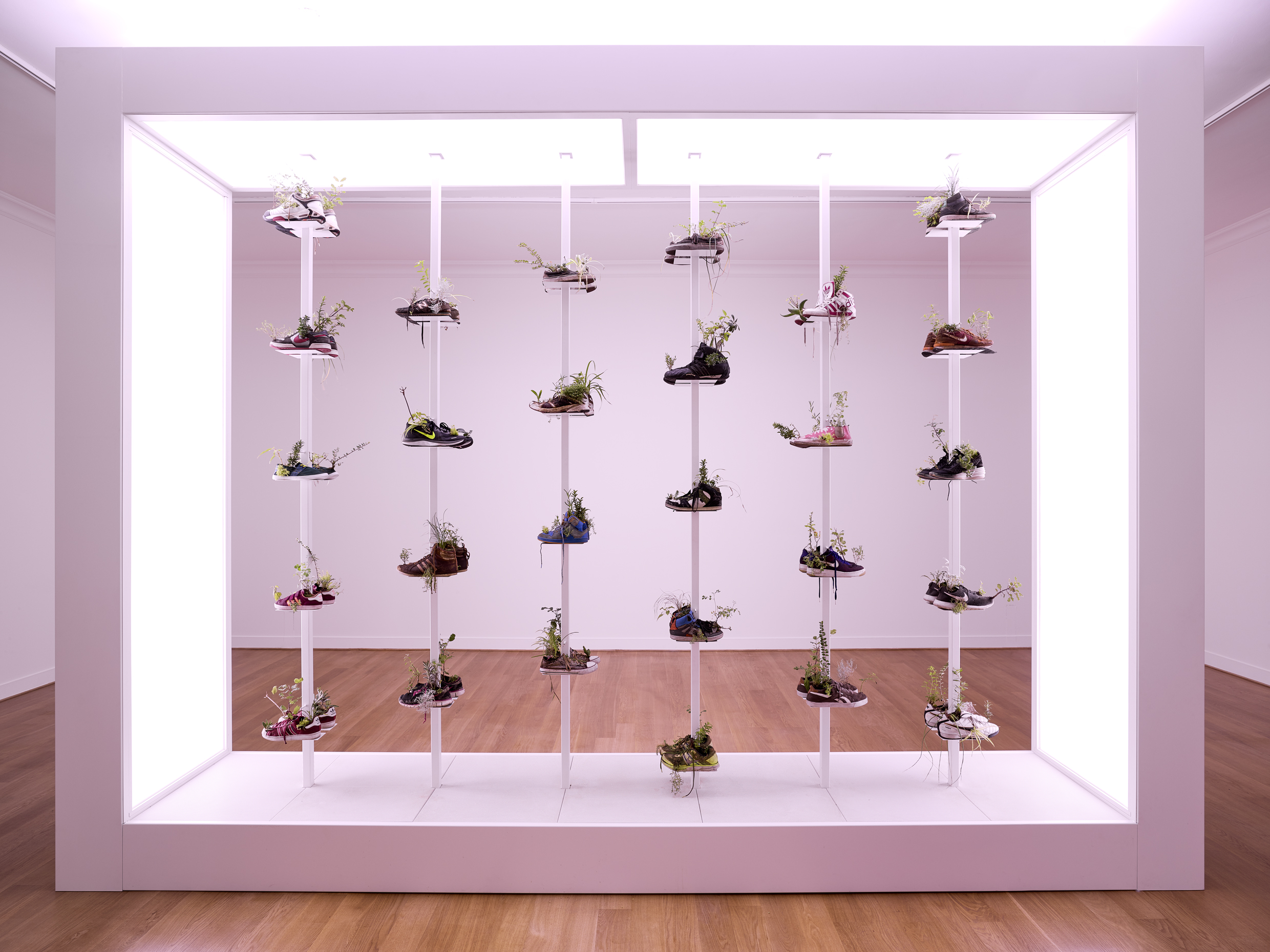 Collection de chaussures, de Michel Blazy