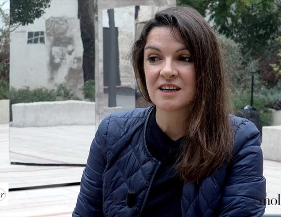 Marielle Macé's interview about Shocking, Considering  (Sidérer, considérer) 2017